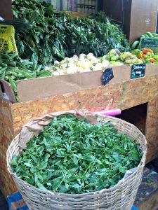 legumes-graines