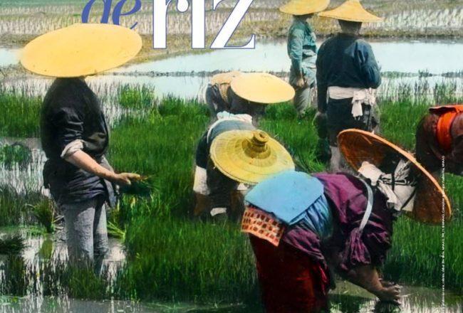 terres de riz poster exposition